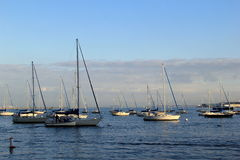 Härlig plats av segelbåtar på vattnet, Boston, Massachusetts, 2014 Fotografering för Bildbyråer