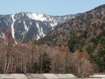 Härlig plats med den snöberget och skogen Royaltyfri Foto
