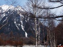 Härlig plats med den snöberget, träd och floden Royaltyfri Foto