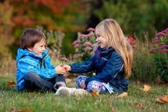 Härlig pojke och flicka i en parkera, pojke som ger blommor till flickan Fotografering för Bildbyråer