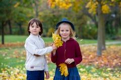 Härlig pojke och flicka i en parkera, pojke som ger blommor till flickan Arkivbilder
