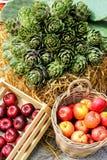 Härlig presentation av frukter och grönsaker fotografering för bildbyråer