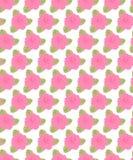 Härlig prydnad med rosa rosor Royaltyfri Fotografi