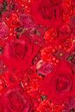 Härlig röd bakgrund för konstgjorda blommor Arkivfoton