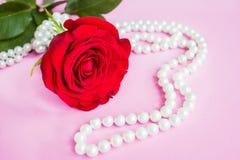 Härlig röd ros med pärlan royaltyfri bild