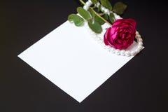 Härlig röd ros med pärlor på tomt vitt arkpapper Royaltyfri Fotografi