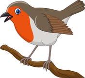 Härlig rödhakefågel för tecknad film vektor illustrationer