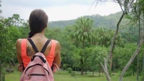 Härlig rainforest med en handelsresande för ung kvinna med en ryggsäck på vägen till skogen Thailand En kvinna promenerar stock video