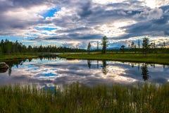 Härlig reflexion av himmel och moln i sjön i mitt av träsket Arkivbilder