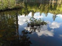 Härlig reflexion på sjön Royaltyfri Fotografi