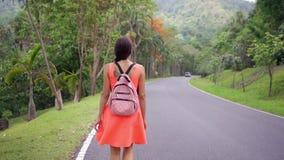 Härlig regnskog med en handelsresande för ung kvinna på vägen in i skogen Thailand Kvinnligt går på en rainforest arkivfilmer