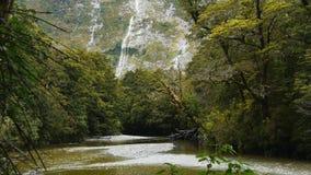Härlig regnskogflod med vattenfallet stock video