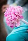 Härlig rosa bukett som rymms av brudtärnan Royaltyfria Foton