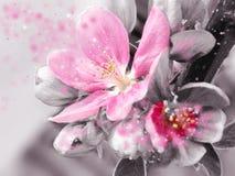 Härlig rosa färgblomfantasi fotografering för bildbyråer