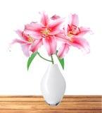 Härlig rosa lilja i vas på vit bakgrund med att fästa ihop PA Arkivbild