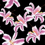 Härlig rosa sömlös modell med liljor Planlägg hälsningkortet och inbjudan av bröllopet, födelsedagen, dagen för valentin` s, mode vektor illustrationer
