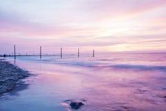 Härlig rosa solnedgång på en kust Arkivfoton