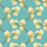 Härlig sömlös bakgrund med blommande magnoliaträdfilialer Arkivfoton