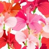Härlig sömlös blom- djungelmodellbakgrund Ljus färgbakgrund för tropiska blommor Realistisk hibiskusblomma royaltyfri illustrationer
