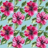 Härlig sömlös blom- modellbakgrund med Arkivbilder