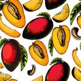 Härlig sömlös modell med exotiska frukter Arkivbild
