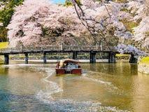 Härlig Sakura blomning i Hikone, Japan 2 Arkivfoton