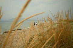 Härlig sandig strand i ett romantiskt lynne royaltyfri foto