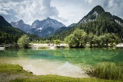 Härlig scenisk sjöjasna i sommartid, Kranjska Gora, Slovenien arkivbilder