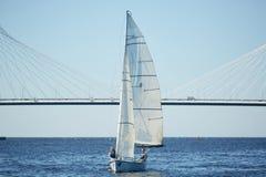 Härlig segelbåt på floden royaltyfria bilder