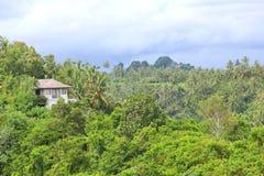 Härlig semesterort i den tropiska rainforesten Royaltyfri Fotografi