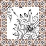 Härlig servett med den hand drog svartvita blomman Royaltyfri Foto
