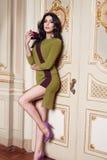 Härlig sexig kvinna i trendig höstsamling för elegant klänning av för brunetthår för vår det lång diagramet ac för kropp makeup g Royaltyfri Bild