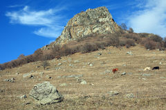 Härlig sikt av berget Arkivbilder