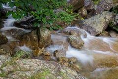 Härlig sikt av bergfloden Royaltyfri Bild