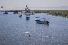 Härlig sikt av blåa fartyg i mitt av sjön Chapala royaltyfria bilder