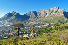 Härlig sikt av Cape Town och tabellberget Royaltyfri Bild