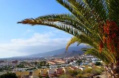 Härlig sikt av Costa Adeje en av de favorit- turist- destinationerna av Tenerife, kanariefågelöar, Spanien royaltyfria bilder