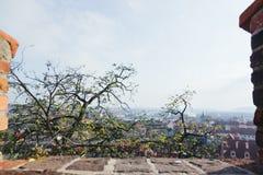 Härlig sikt av den gamla staden av Prague royaltyfria bilder