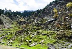 Härlig sikt av den Naran dalen, Pakistan Arkivfoto