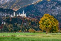 Härlig sikt av den Neuschwanstein slotten i höst Royaltyfri Bild