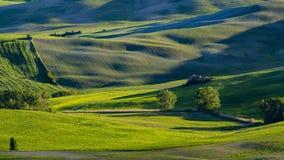 Härlig sikt av gräsplanfält och ängar på solnedgången i Tuscany Royaltyfria Bilder