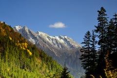 Härlig sikt av Jiuzhaigou, Kina Fotografering för Bildbyråer