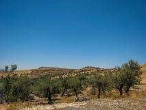 Härlig sikt av landskapet i Tunisien Juli 2013 Fotografering för Bildbyråer