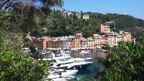Härlig sikt av Portofino som ses bland filialerna med dess havskust med färgrika hus och lyxiga yachter, Portofino, Italien lager videofilmer
