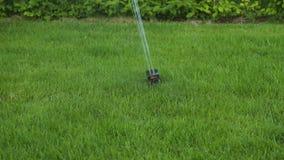 Härlig sikt av processen av automatisk gräsmatta som bevattnar på sommardag arkivfilmer