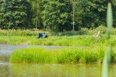 Härlig sikt av sjön, metspön, grön skog, blå himmel Fiska, i sjön, begrepp av en lantlig flykt och att fiska Arkivbilder