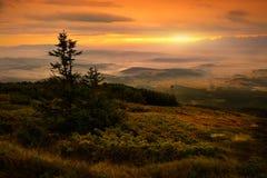 Härlig sikt av soluppgång på det Babia berget poland Royaltyfria Foton