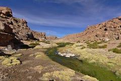 Härlig sikt av strömmen mellan berg mycket av frodig vege Royaltyfria Foton