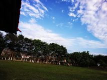 Härlig sikt för blå himmel och runt om träden royaltyfria bilder