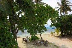 Härlig sikt från ovannämnt på havkusten Maldiverna, Indiska oceanen Töm stolar och tabeller, inga personer Gröna träd omkring Royaltyfria Foton